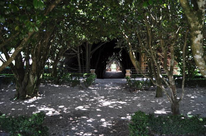 Дворец Каза-ди-Матеуш - Casa de Mateus 47638