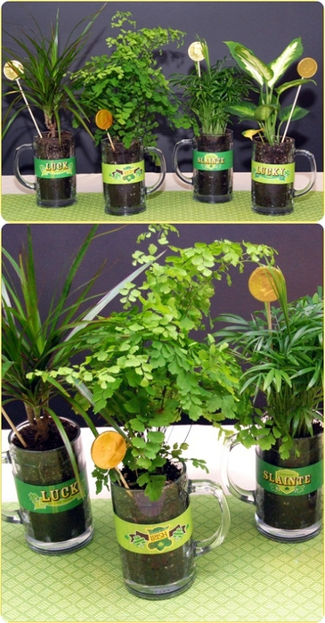 potted-plant-beer-mug-centerpieces (365x700, 245Kb)
