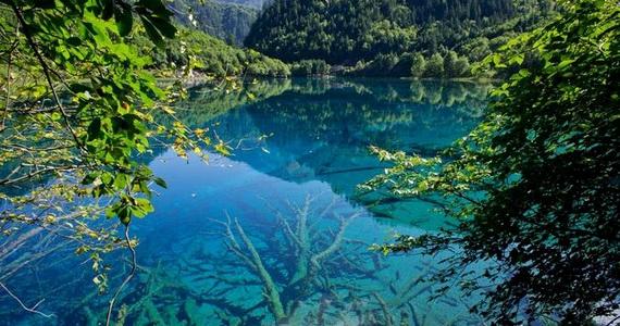 водоемы с прозрачной водой 3 (570x300, 187Kb)