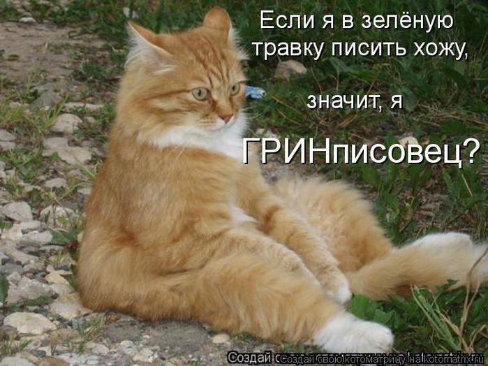 kotomatritsa_CK (700x524, 66Kb)