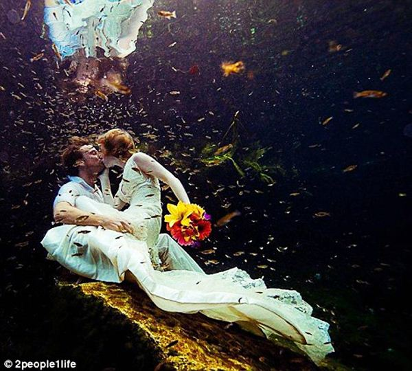 22 weddings 15 (600x540, 70Kb)