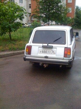 1314250493_podborka_09 (337x450, 34Kb)
