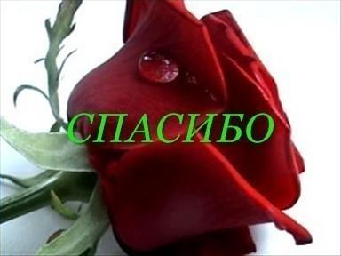 http://img1.liveinternet.ru/images/attach/c/6/90/59/90059179_42028999_________00011.jpg