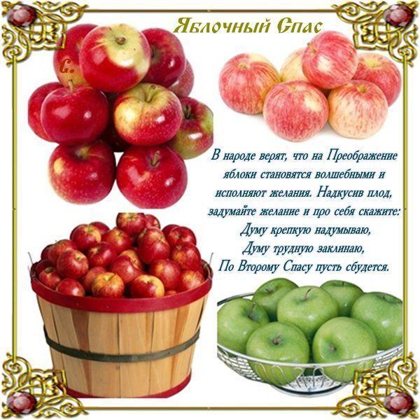 Яблочный Спас1 (600x600, 78Kb)