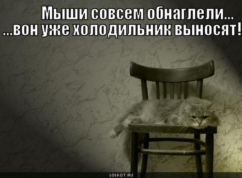 myshi-sovsem-obnagleli...-_1301149605 (500x368, 29Kb)