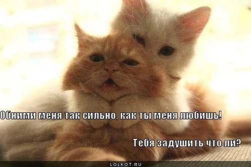 obnimi-menya_1341661901 (500x333, 17Kb)