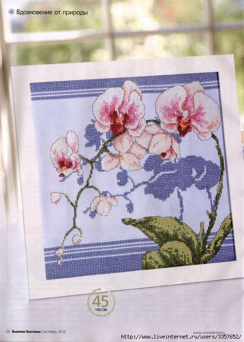 """Вышивка """"Орхидея"""""""