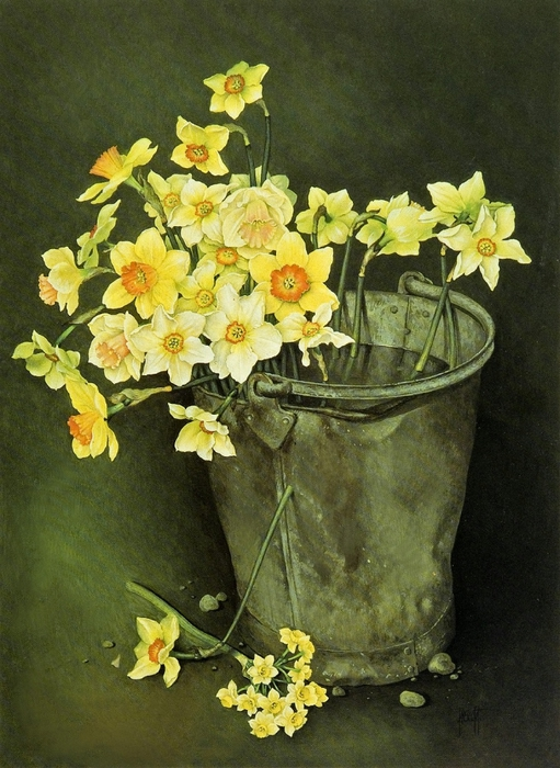 BUCKET OF MIXED DAFFODILS AND NARCISSI 76x56 cmGouache1989 (511x700, 293Kb)