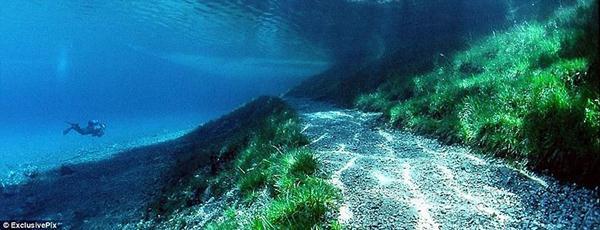 underwater park 3 (600x230, 34Kb)