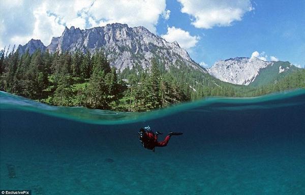 underwater park 5 (600x384, 36Kb)