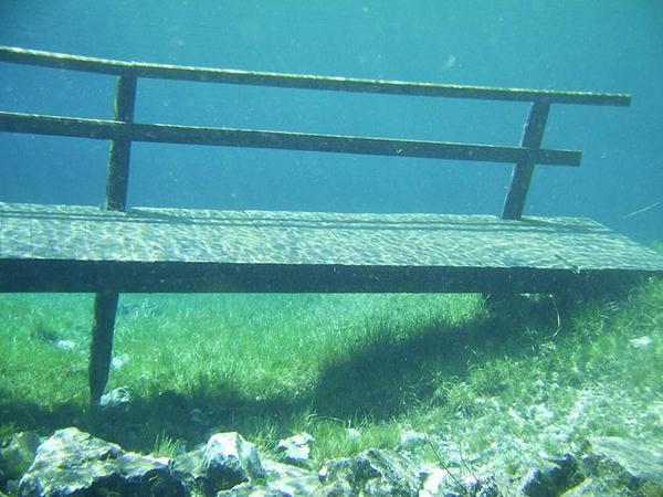 underwater park 7 (600x450, 48Kb)