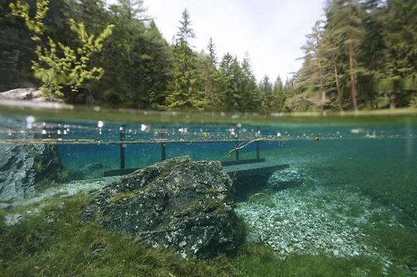 underwater park 9 (600x399, 50Kb)