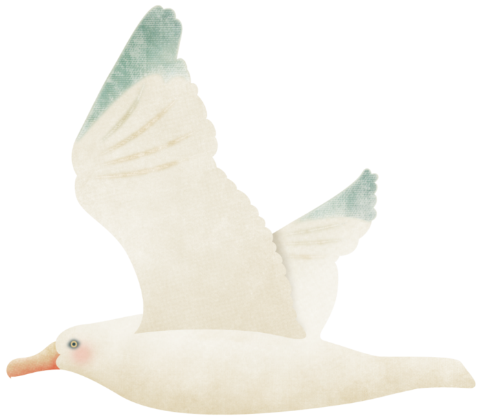 kb-seasideholiday_gull (700x609, 222Kb)