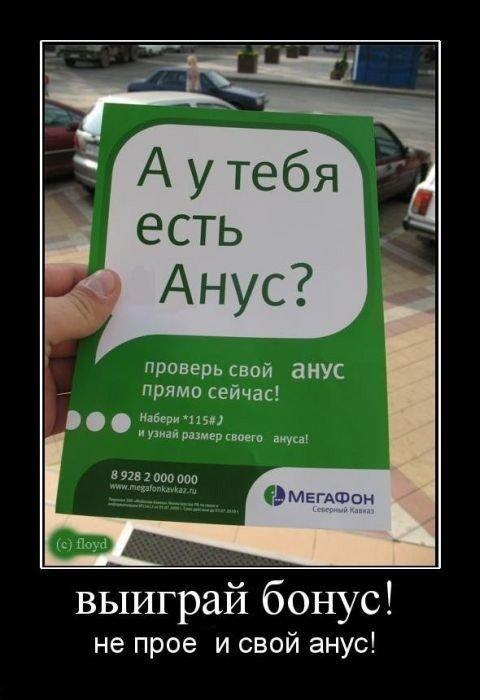 1337243018_13d0439282 (480x700, 50Kb)