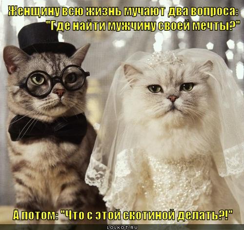 muchitelnyye-voprosy_1342692687 (500x471, 193Kb)