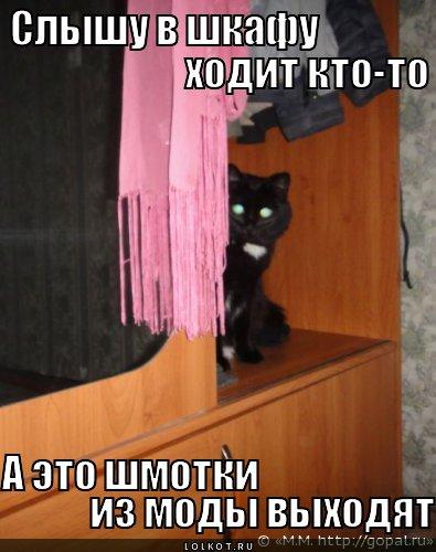 shmotki-iz-mody-vyhodyat_1333568657 (395x500, 42Kb)