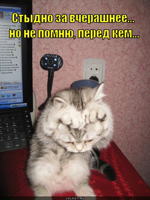 stydno-za-vcherashneye_1335360251 (500x666, 146Kb)