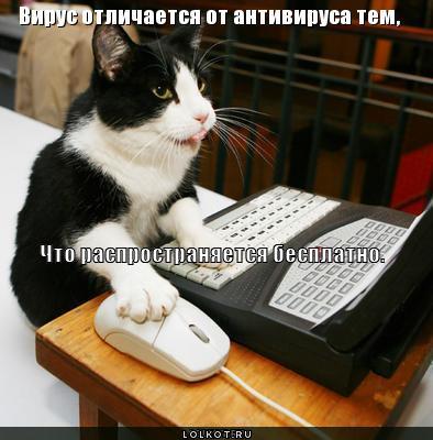 virus_1308560593 (394x400, 30Kb)
