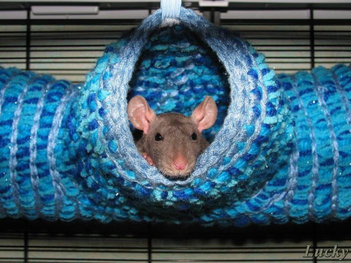 Вязаный гамак для крысы своими руками 95