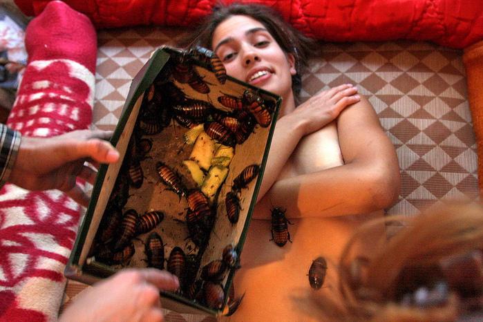 в музее пуси райт видео порно: