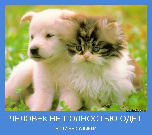 380380_469661896385222_134501618_n[1] (644x573, 43Kb)