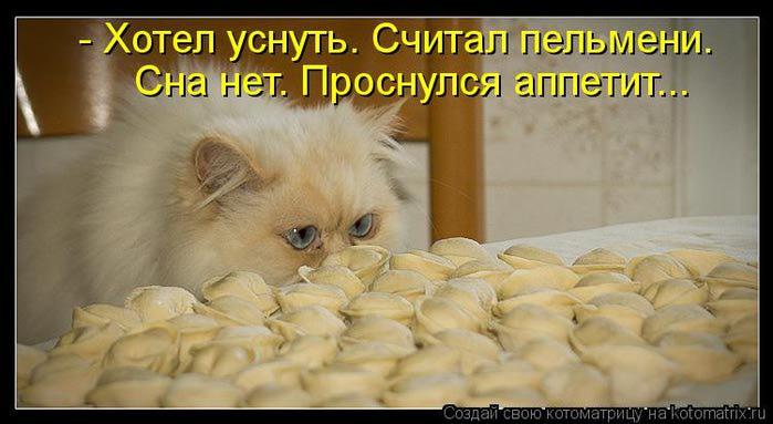 kotomatritsa_9L (700x383, 41Kb)