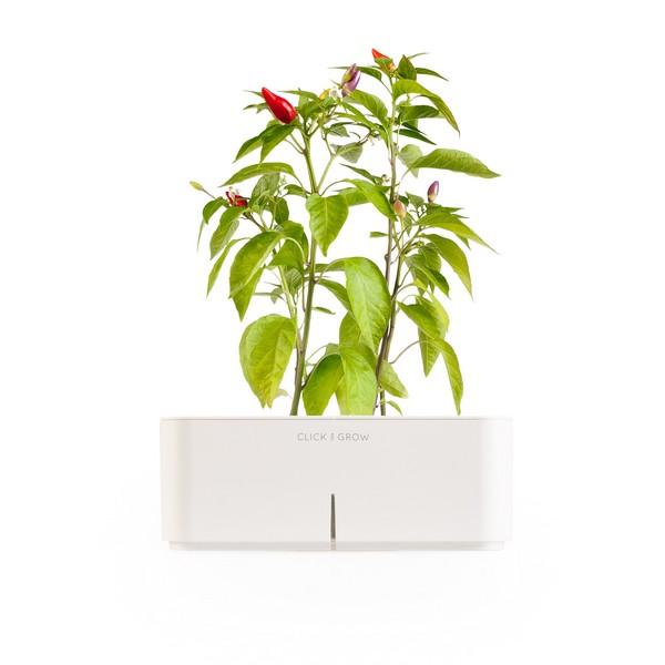 электронный горшок для цветов Click and Grow 4 (600x600, 39Kb)