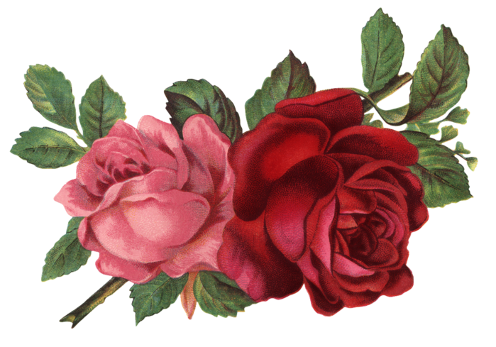 Valley_of_Roses_emb_001 (700x489, 437Kb)