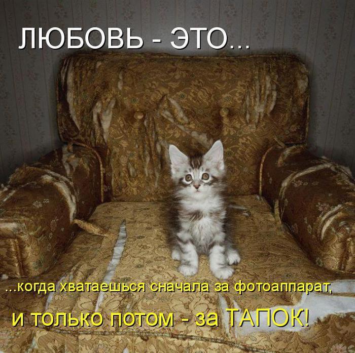 87314994_u81 (700x697, 96Kb)