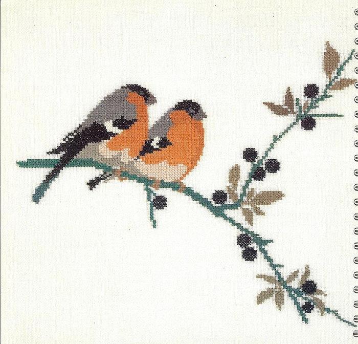 птицы 1993 (1) (700x672, 164Kb)