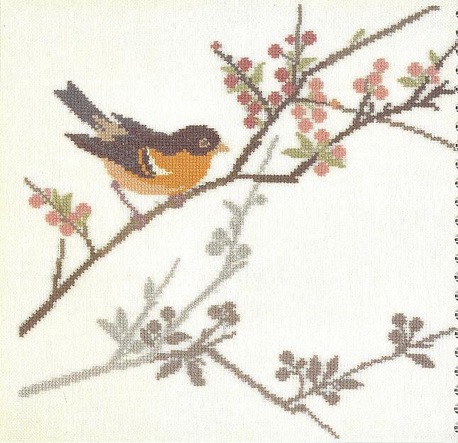 птицы 1993 (9) (646x625, 124Kb)