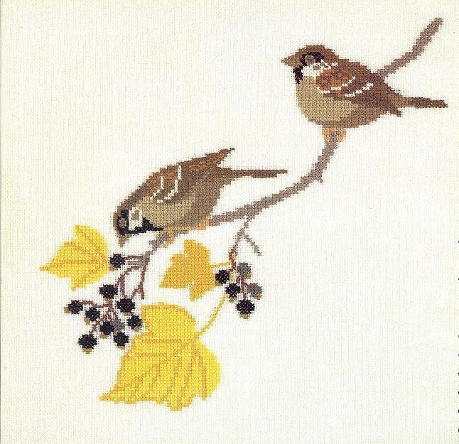 птицы 1993 (13) (646x625, 120Kb)
