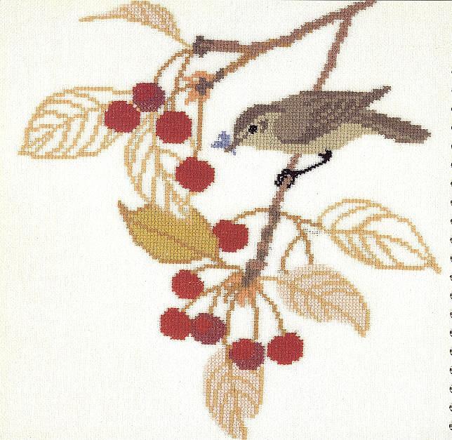 птицы 1993 (15) (644x627, 128Kb)