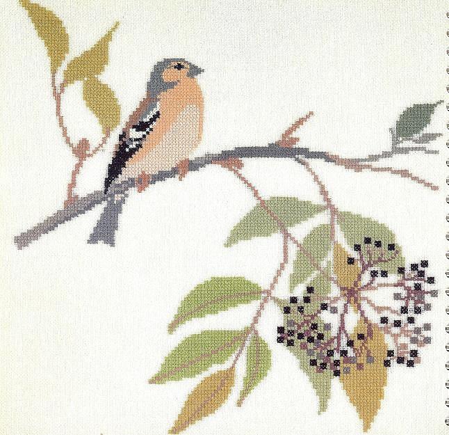 птицы 1993 (17) (646x625, 140Kb)