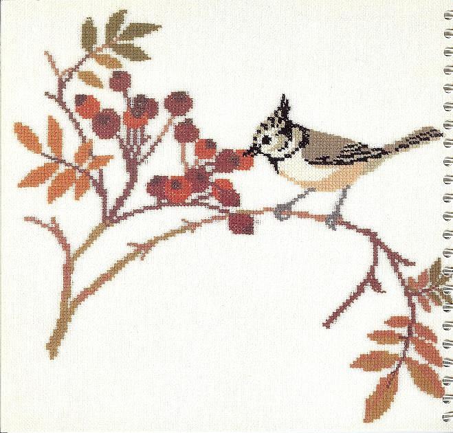 птицы 1993 (19) (659x630, 123Kb)