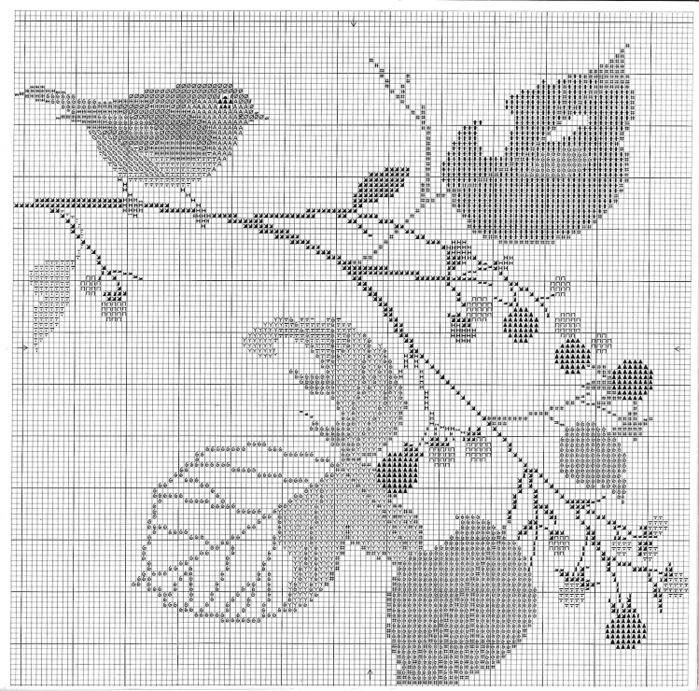 птицы 1993 (22) (700x691, 224Kb)