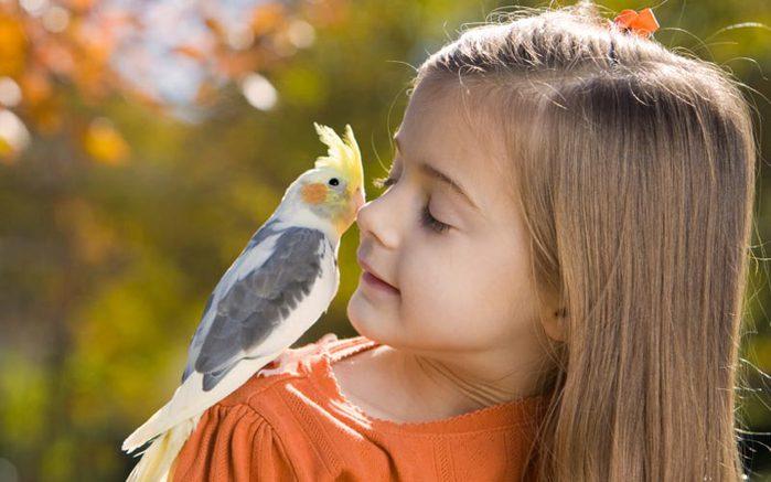 90792611_3365178_kids_pets_03 - Lasting friendships start early, Part 2 - Inspiration & Hope