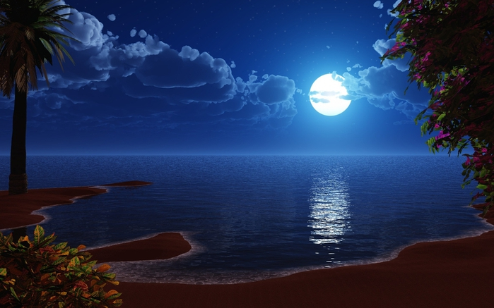 3D-graphics_Beach_night_024139_ (700x437, 207Kb)