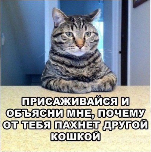 podborka_09 (502x505, 58Kb)