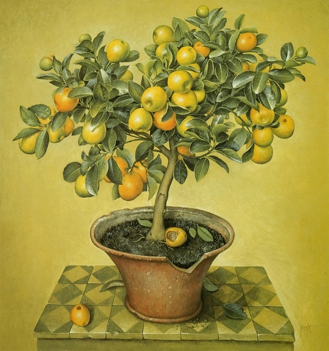 CUMQUAT TREE IN CRACKED POT74x68Gouache1990 (657x700, 356Kb)