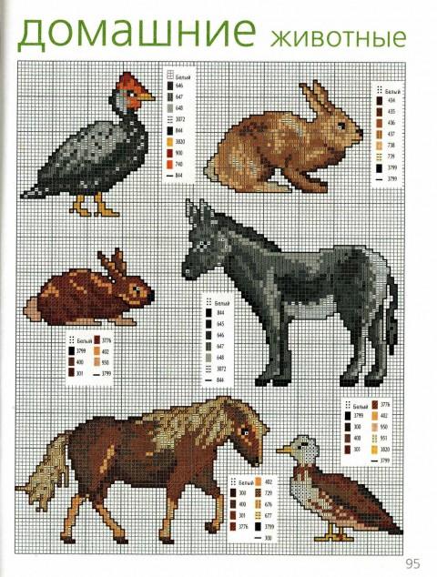 зоо (3) (480x634, 139Kb)