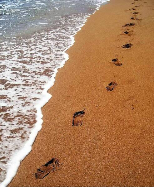 footprints_in_the_sand_op_493x600 (493x600, 69Kb)