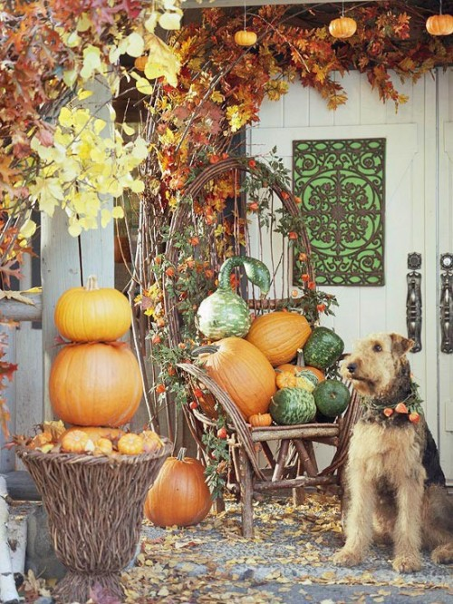 fall-front-porch-decorating-ideas-00050-500x666 (500x666, 143Kb)
