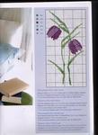 Превью Acufactum-Sommergaeste (25) (508x700, 257Kb)