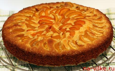 Рецепты пирога с абрикосами