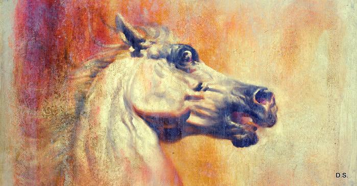 TR0037_Horses I_Final (700x365, 120Kb)
