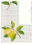 Превью limon2 (513x700, 416Kb)