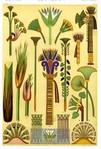 Превью 73Egyptian lotus motifs (474x700, 278Kb)