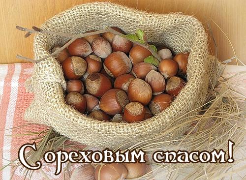 oreh_spas_02 (500x366, 158Kb)