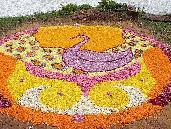 1.1251641419.onam-festival-flower-decoration (550x413, 197Kb)